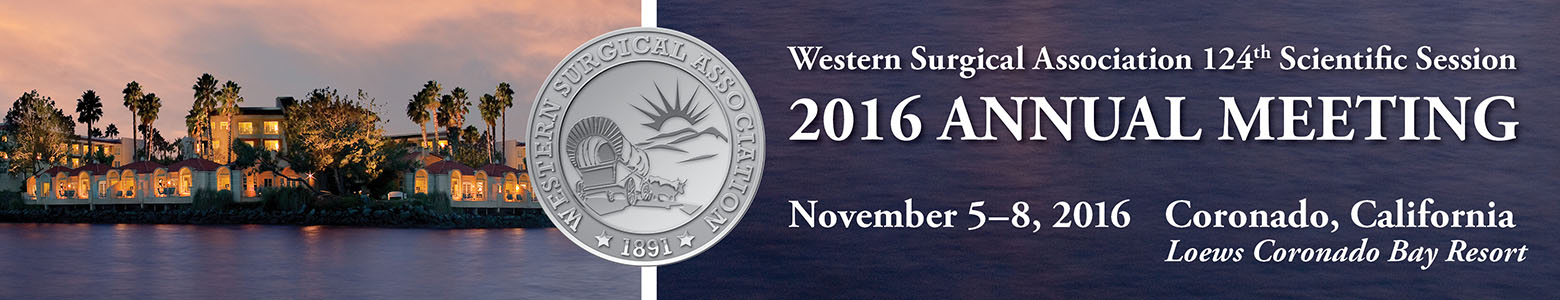 WSA 2016 Meeting Banner