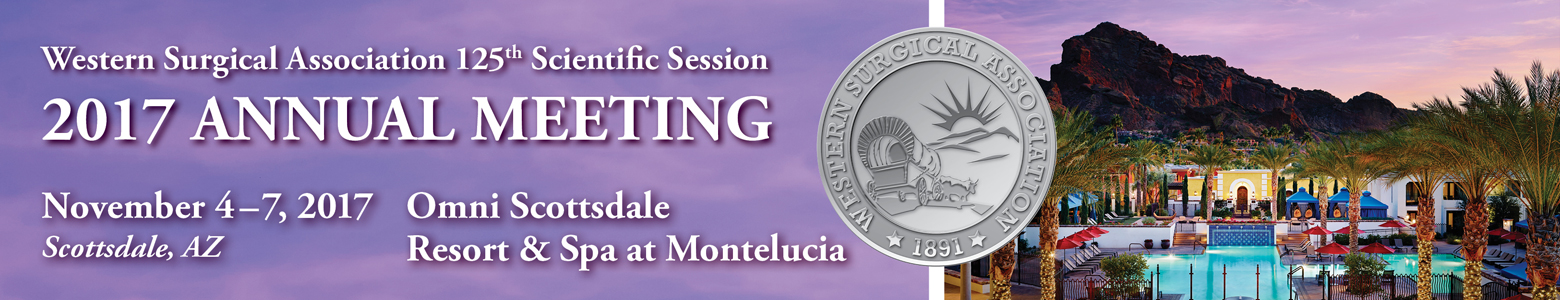 WSA 2017 Meeting Banner